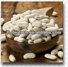 Natural White Kidney Bean Extract /Organic White Kidney Bean Extract