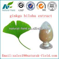 Best service 100% natural ginkgo biloba