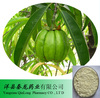 Hot sale Hydroxy citric acid(HCA) Garcinia Cambogia Extract