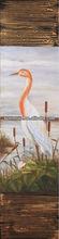 swan paintings