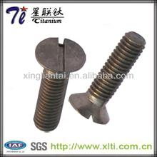 Supply alloy Slotted Countersunk head titanium screws