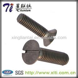 DIN963 titanium bolts for mountain bikes