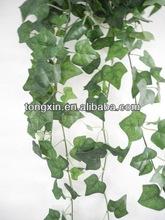 zimmerpflanzen h ngend beliebte zimmerpflanzen h ngend auf. Black Bedroom Furniture Sets. Home Design Ideas