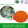 Herb Medicine Macleaya Cordata Extract /Sanguinarine, chelerythrine
