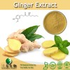 Kosher & Halal High Quality Ginger Extract Powder Gigerols 1391-73-7