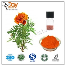 Pure Natural Sources Calendula Officinalis Softgel for Eye Benefit