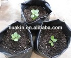 plastic nursery grow bags