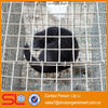 hebei steel laboratory cages for rats/rat trap cage