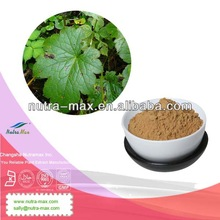 High Quality Black Cohosh Extract 2.5% - QS & ISO9001 Factory