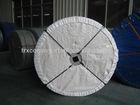 Hight quality Nylon/NN conveyor belt