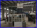 Rumania de polvo de madera/ramas/los residuos de madera de pistón de briquetas de prensa