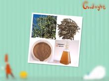 Olive Leaf Extract Powder,98% Hydroxytyrosol Powder