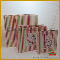 2013 Fashion euro shopper paper bag