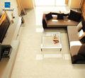 Cuarto de baño del azulejo 3D cerámica del azulejo de piso