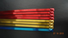 Coloured Stainless Steel Cable Zip Strip