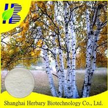 Antitumor Activity Birch Bark Extract