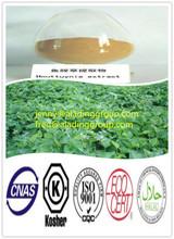 Natural Antibacterial Heartleaf Houttuynia Herb/extractum Herba Houttuyniae