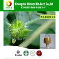 Credible qualidade 40% natureza tribulus terrestris saponinas esteróides
