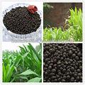 blackgold humate Tipo III fertilizzanti azotati urea 46 perlati