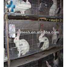 custom rabbit hutch/rabbit huntch(Xunqiang supply)