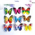 india partito farfalla partito decorazioni