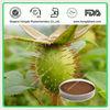 100% Natural Cherokee Rose Fruit Extract Powder 10:1