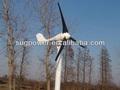 Mini generatori eolici, 300w turbine eoliche a magneti