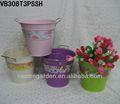 colorido jarrones de flores y cubo para el hogar y el supermercado