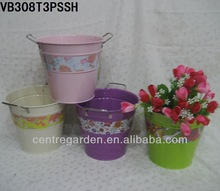 Colorful flower vases and buckets for home and supermarket