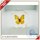 FOUSEN dried and real butterfly crystal home decorative items
