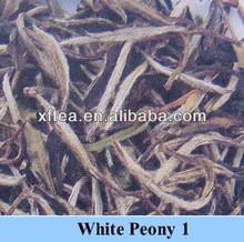Bai Mu Dan White Peony 6901