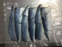 mackerel fillet steak