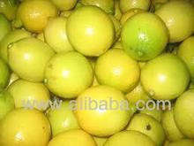 frescas frutas cítricas