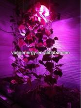 wide lighting coverage!!! integrated LED + innovative light spectrum+factory price,300w LED vegetative plant lamp