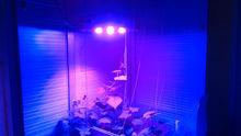 e-sunshine light,integrated LED chip 300w full light spectrum plant growing lamp