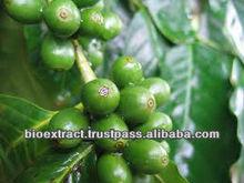 Green Coffee Bean Extract 45% Chlorogenic Acids
