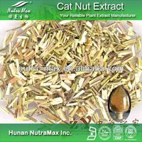 1kg Cat Nut Extract (Latin Name: Schizonepeta Tenuifolia Brig)
