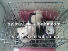 Welded Dog Transport Cage