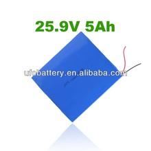 7S1P 25v 5Ah lifepo4 Golf Cart Battery/ups battery pack/wind energy