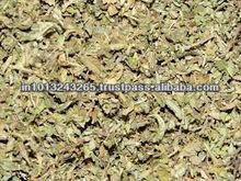 Damiana leaf extract