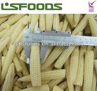 2013 New crop IQF frozen baby sweet corn