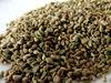 Quality Carom (Ajwain) Seeds