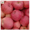 Top fuji apples price