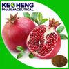 China pomegranate peel extract/ellagic acid 90%