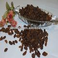 La nueva cosecha de color marrón oscuro sultana de ningún tipo. 9