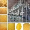 Longtai 30T Maize Flour Mill Machine/corn milling equipment