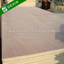 Termites Resistant Plywood/Plywood Termite Resistant