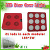 indoor grow high power led grow light for cultivation of black pepper