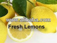 Best price, lemons fresh