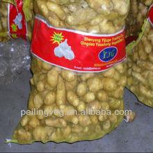 fresh potato price 2013 (shouguang factory)